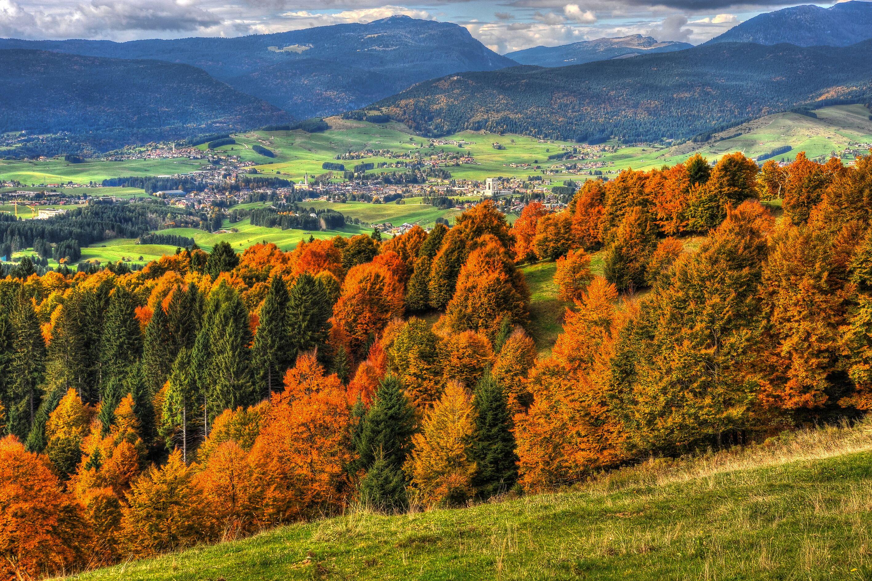 Asiago Foliage: colori e profumi della montagna