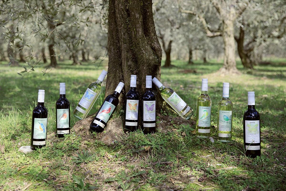 I vini biologici di Tinazzi